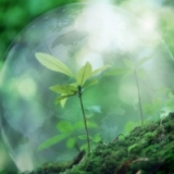 Экологическое страхование