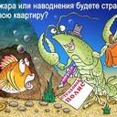https://legalinsurance.ru/images/groupphotos/13/72/thumb_444c9298b0b787a597de8660.jpg