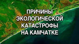 КАТАСТРОФА НА КАМЧАТКЕ | Камчатку отравили ракетное топливо и ложь! #ЛюдмилаФионова