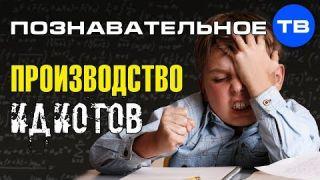 Система создания будущего: Производство идиотов (Познавательное ТВ, Михаил Величко)